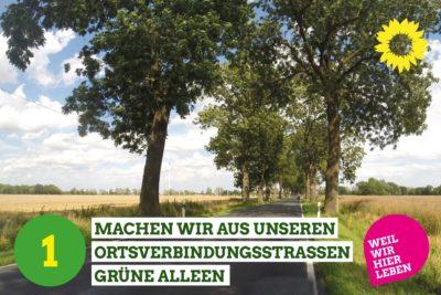1 Machen wir aus unseren Ortsverbindungsstraßen grüne Alleen